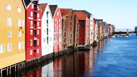50D 08537 Trondheim gimp klein