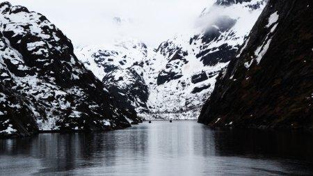 50D 10110 Trollfjord gimp klein