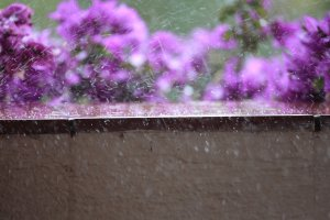 Regen auf Tenerife